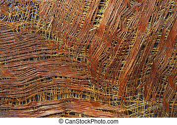 texture of palm tree bark