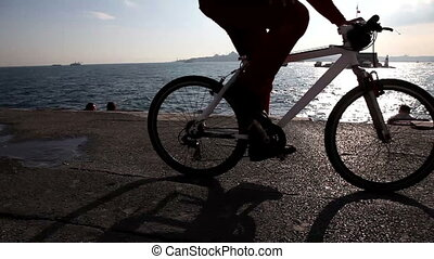 bicycle passing seaside with maiden tower istanbul