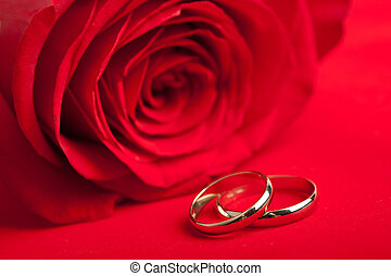 Gold wedding rings and red rose