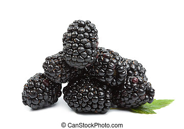fresh blackberries isolated