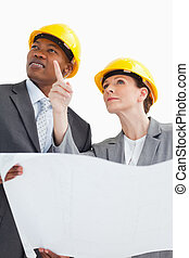 Business people wearing hard hats are talking - Business...