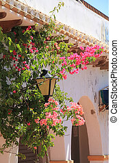 House typical of southern Spain full of flowers