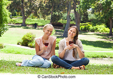 Friends with wine glasses in the park