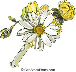 Boutonniere with white chrysanthemum.