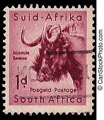 South Africa Postage Stamp Black Wildebeest 1954 - SOUTH...