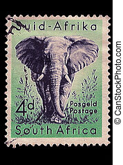 South Africa Postage Stamp African Elephant 1954 - SOUTH...