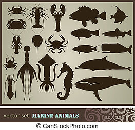 Marine animals - Marine animals