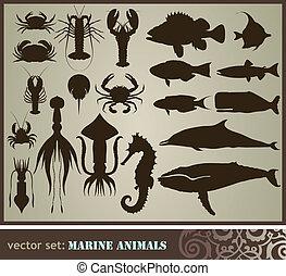 Marine animals - Marine animals