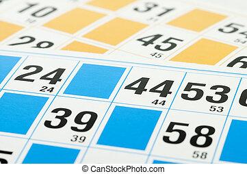 bingo, tarjetas, número, cuarenta, cuatro