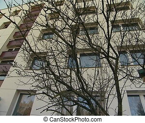 renovated and bird house - renovated apartment multistorey...