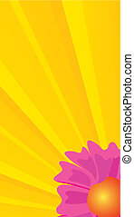 yellow backdrop with flower
