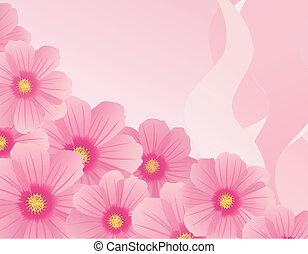 rillustration of cosmos flower - illustration of cosmos...