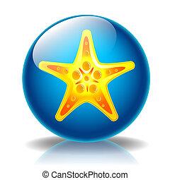 Starfish glossy icon