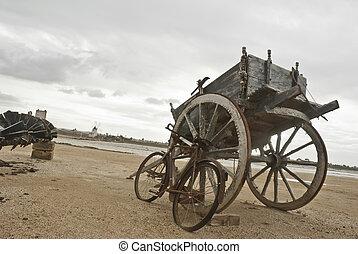 vintage sicilian cart - old Sicilian cart horse. Salines of...