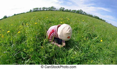boy searches for bug in herb