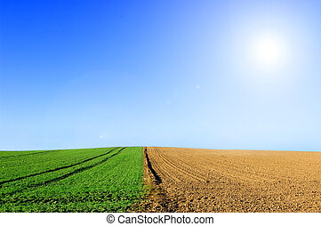Green and plowed field conceptual image Picture of green and...