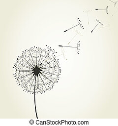 Dandelion7 - From a dandelion seeds fly. A vector...
