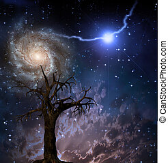 Tree and space