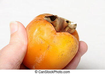 Finger holding one ripe kaki fruit in hand