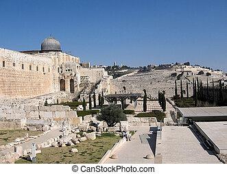 al-aqsa,  2008, jerusalén, mezquita