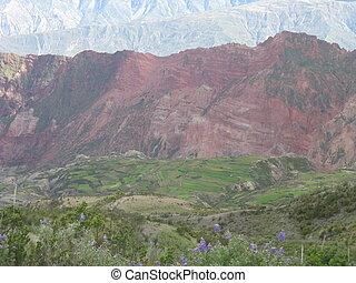 Potato Fields outside La Paz - Terracing to feed hundreds of...