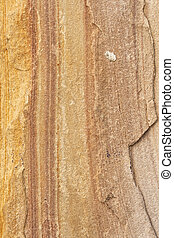 Sand texture line different color