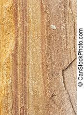Sand texture line different color