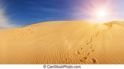 Sand dunes in Sahara - Beautiful sand dunes in the Sahara...
