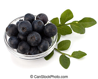 Blue bilberry or whortleberry