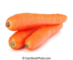 Carrot tubers