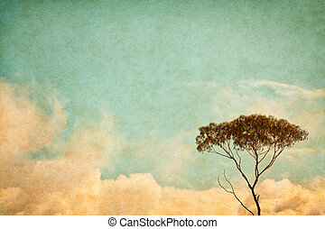 Vintage Sky and Tree - A eucalyptus tree and clouds done in...