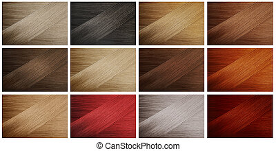 Hair Samples - Set of various hair colors samples