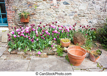 Garden with tulips and orange flower pots
