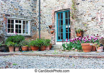 Backyard with tulips and orange flower pots