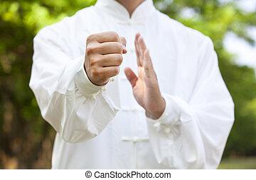 mão, kung, fu, homem