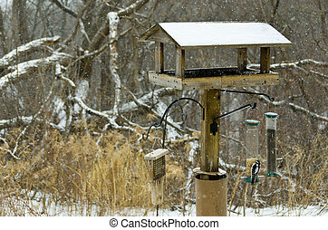 Birdfeeder - Large Bird Feeder in the Wintertime