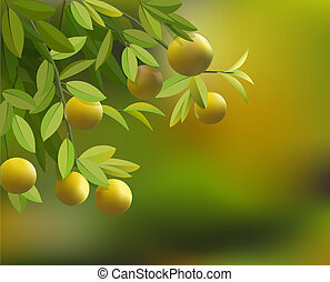 background with branches, leaves and lemons