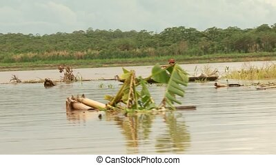 Fishing People On Amazon River