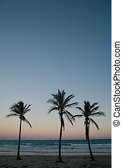 Tropical Island - a beautiful tropical island scene in Cuba