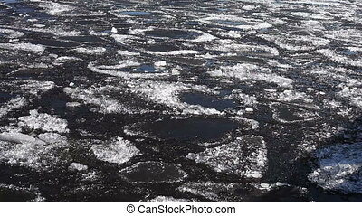 Melting spring ice floe floats on river water