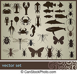 Vector set - Vector set