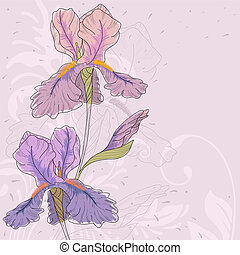 Vector iris - Hand drawn iris with fantasy flowers and...