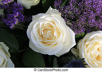 Single white rose - Close up on a single white rose in a...