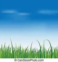 fresh green grass over blue sky