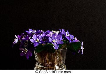Bouquet of blue anemones