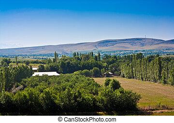 Mashat , Southern-Kazakhstan
