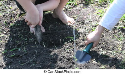 children digging gardening with spades in spring