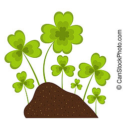 Clover in garden - Clovers growing in soil. Spring vector...