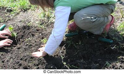 gardening planting children