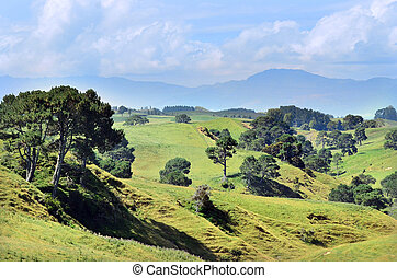 Hobbiton Movie Set and Farm - The landscape of the Hobbiton...